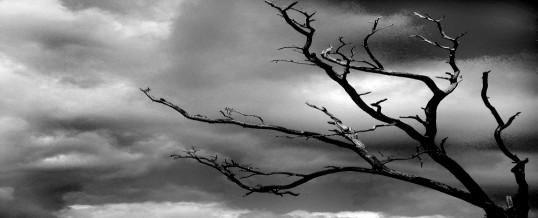 Tod des Partners – wie damit umgehen?