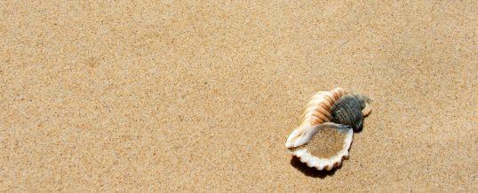 Ich war zu lange allein – bin ich noch vermittelbar? 9 Tipps