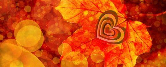 Fünf gute Gründe, sich noch im Herbst zu verlieben
